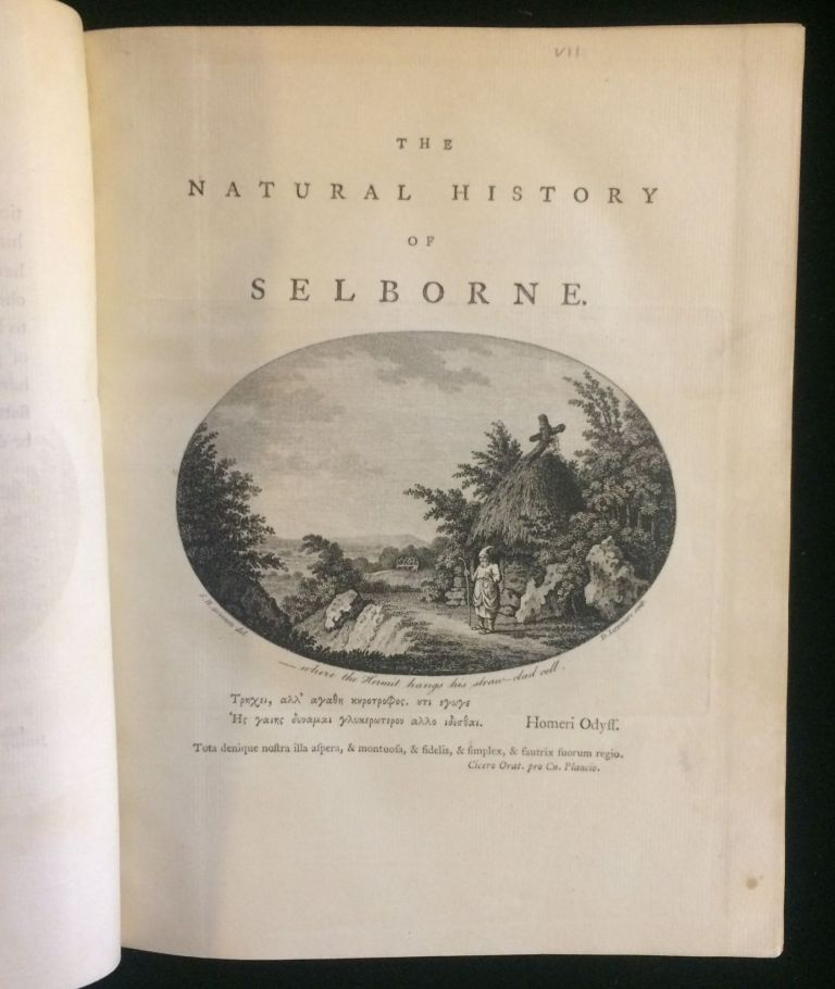 The Natural History and Antiquities of Selborne in the County of Southampton: With Engravings and an Appendix. Gilbert White.