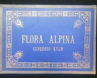 FLORA ALPINA pressed wildflower specimen album 1910. anonymous collector