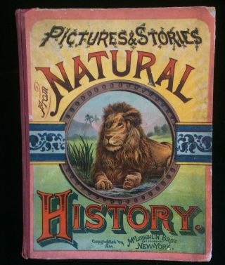 PICTURES AND STORIES FROM NATURAL HISTORY (children's animal book