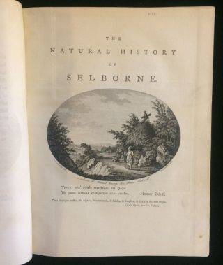 The Natural History and Antiquities of Selborne in the County of Southampton: With Engravings and...