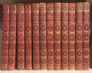 THE NEW NATURAL HISTORY (12 volumes, complete). Richard Lydekker, Joel A. Allan Allan